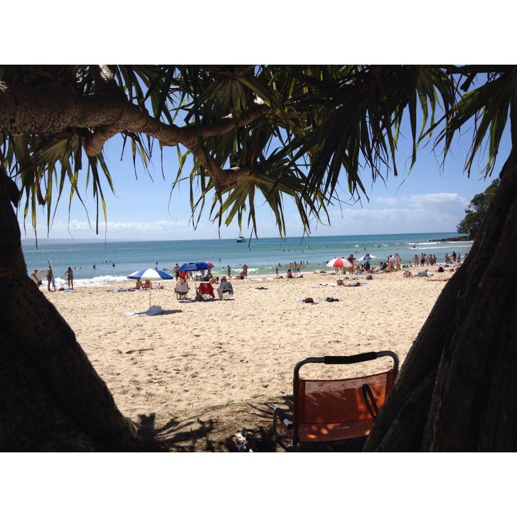 Photo I took on a sunny day in noosa