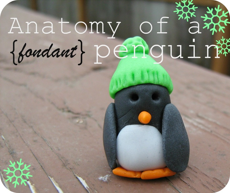 Anatomy of a Penguin: Anatomy of a Penguin