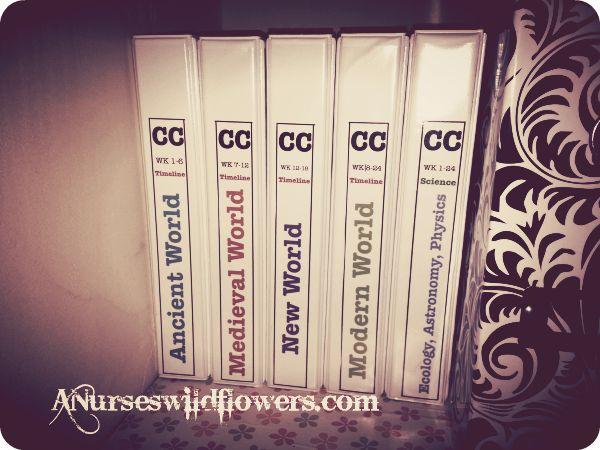 A Nurse's Wildflowers - Classical Conversations Timeline Card Organization