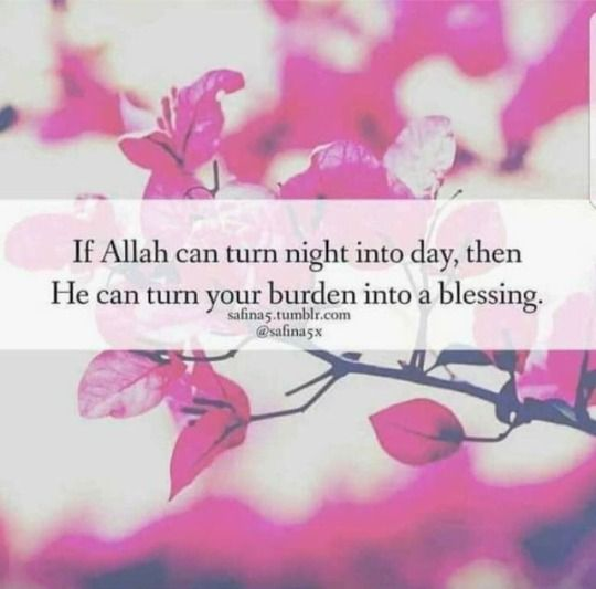 Alhamdulillah for the glory of Allah!