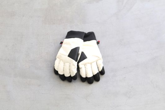 "THE NORTH FACE (ザ ノース フェイス ) ""Fakie Glove"""