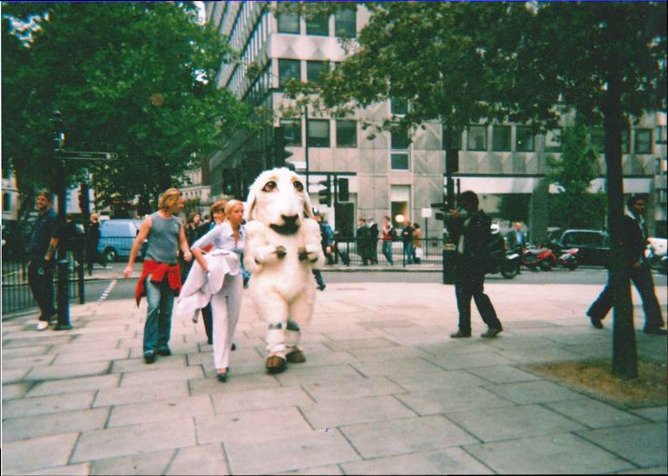 Protesters took to the streets to to campaign against live exports (Old photo)