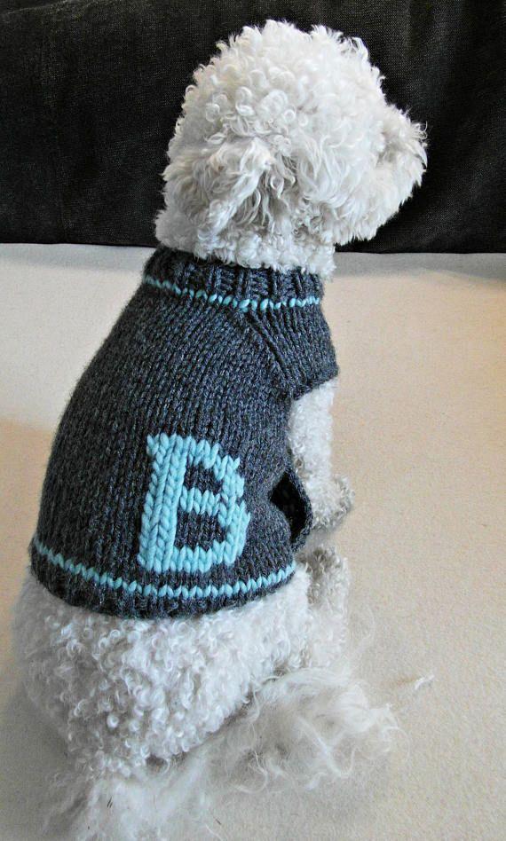 Gepersonaliseerde hond trui. Handgemaakte hond kleding. De