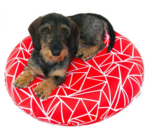Inflatable Dog Beds from Muovo - Dog Milk