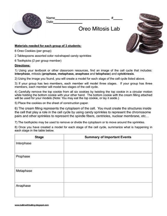 Oreo Mitosis Student Worksheet Balling