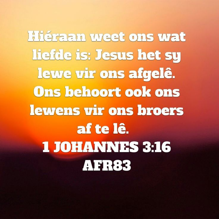 1 Johannes 3:16 Hieraan weet ons wat liefde is; Jesus het Sy lewe vir ons afgelê. Ons behoort ook ons lewens vir ons broers af te lê.