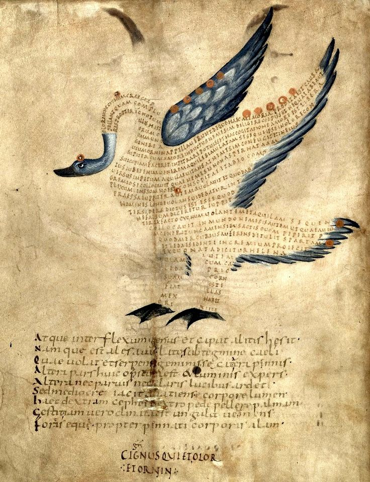 Illustration of the swan of the constellation Cygnus, with text or scholia within the figure of the constellation. (f°5v) -- «Aratea, with extracts from Hyginus's Astronomica in the constellation figures», by Marcus Tullius Cicero, Reims (France), 9th c. [BL Ms Harley 647]