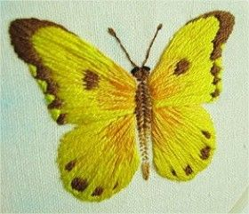 borboleta ponto cheio 01