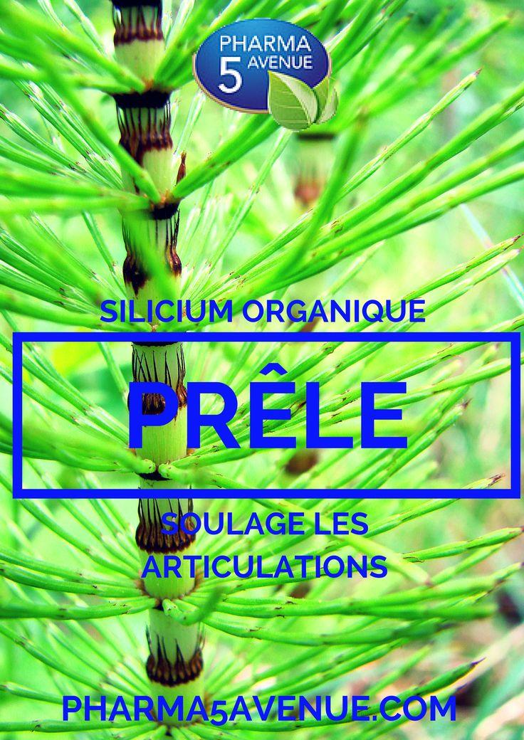 #siliciumorganique #silicium #prêle #reminéralisant La prêle est une plante médicinale exceptionnelement riche en silicium qui aide à soulager les rhumatismes articulaires. disponible sur www.pharma5avenue.com http://www.pharma5avenue.com/elimination-detox/169-naturland-prele-75-gelules-vegecaps-silice-3461926151028.html