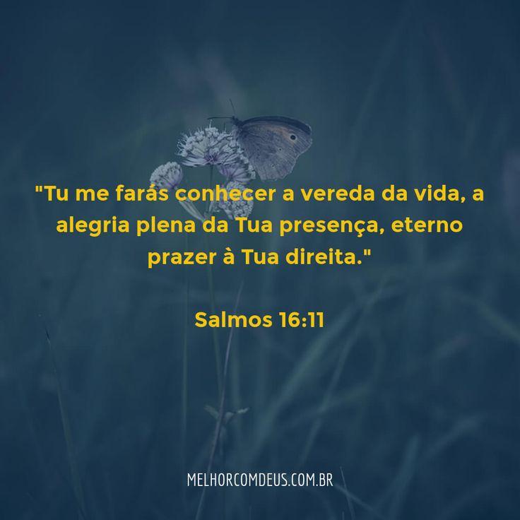 """""""Tu me farás conhecer a vereda da vida, a alegria plena da tua presença, eterno…"""