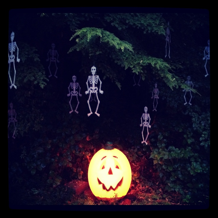 17 best images about glow in the dark paint on pinterest | jars, Reel Combo