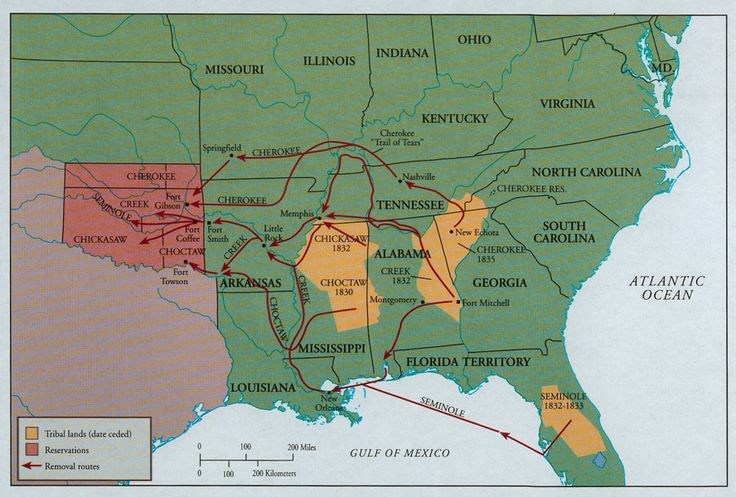 Trail of Tears...my great great grandma was left as a child in northern Arkansas.  She was adopted by a local family.