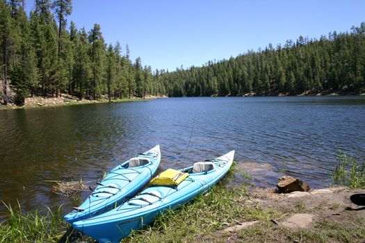150 best images about rim country of arizona on pinterest for Apache lake fishing