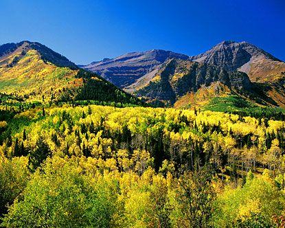 Orem, Utah: American Forks, Fall Mountain, Favorite Places, America National, Parks Cities Utah, Beautiful Places, National Parks, Beautiful Utah, Utah Mountain