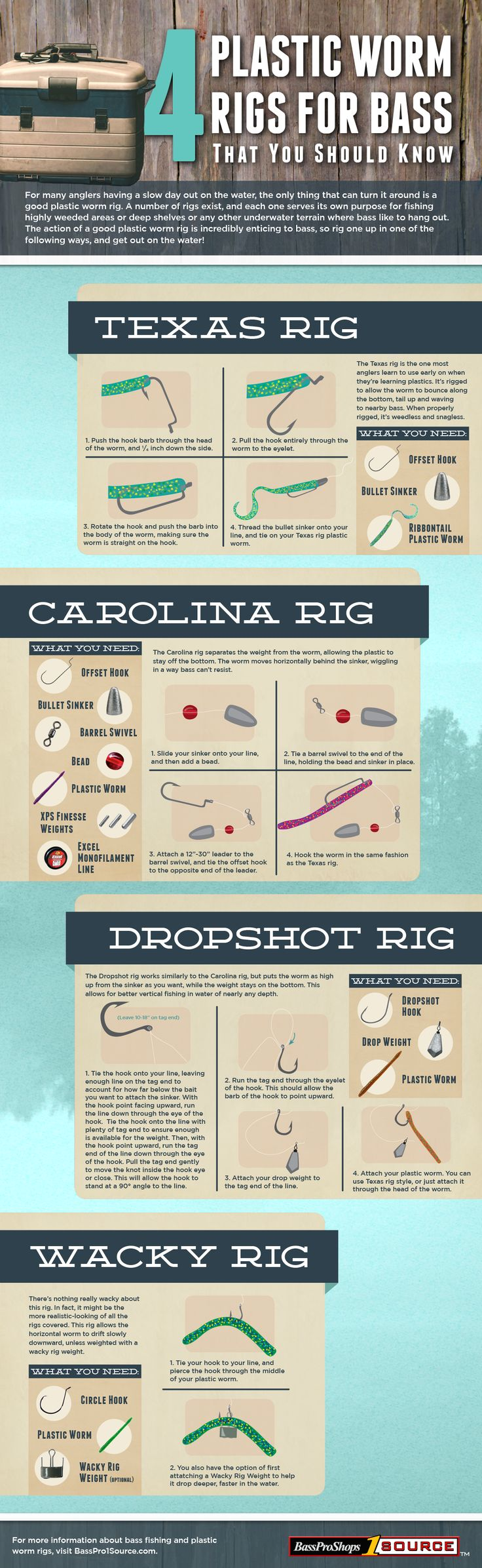 How to Fishing Rigs: Texas Rig, Carolina Rig, Dropshot Rig & Wacky Rig