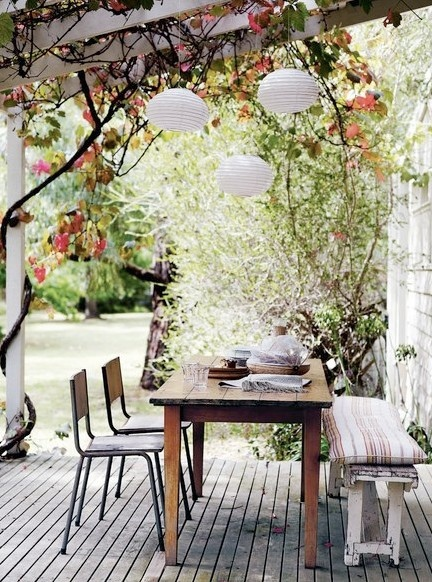 Open rafters for vines to grow and hanging lights