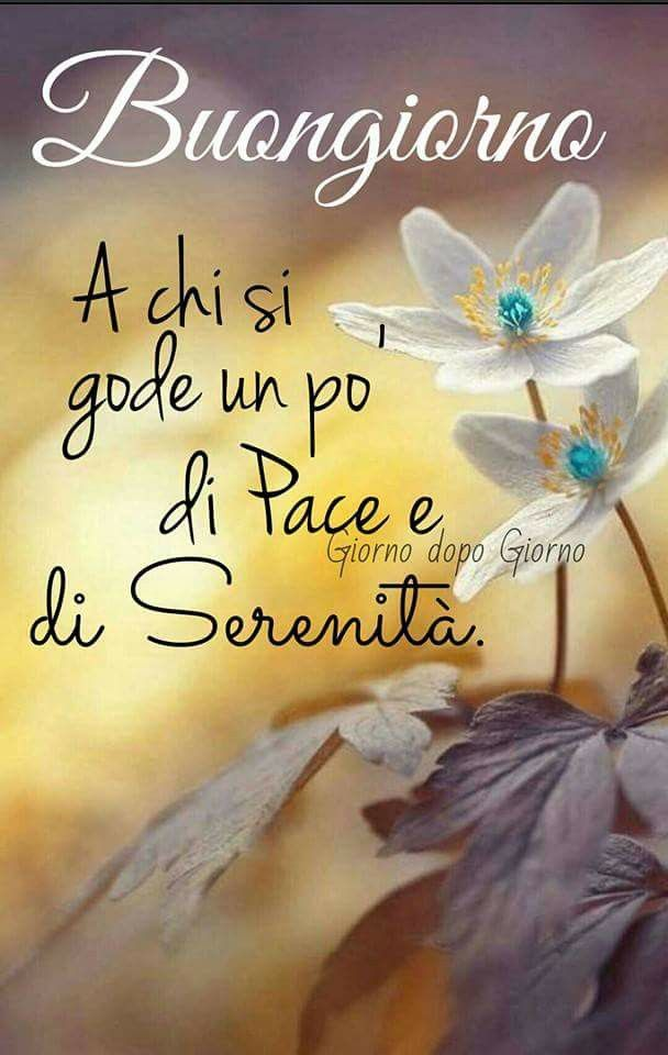 233 best images about buongiorno on pinterest for Top immagini buongiorno