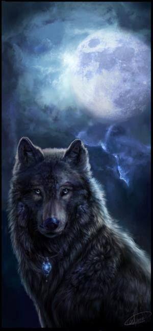 Wolf in de avondschemer