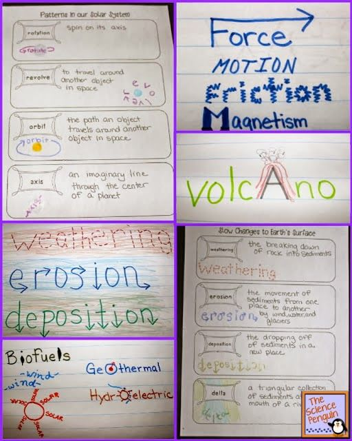I don't teach science, but I <3 this for vocabulary words:) The Science Penguin: Science Vocabulary Folders