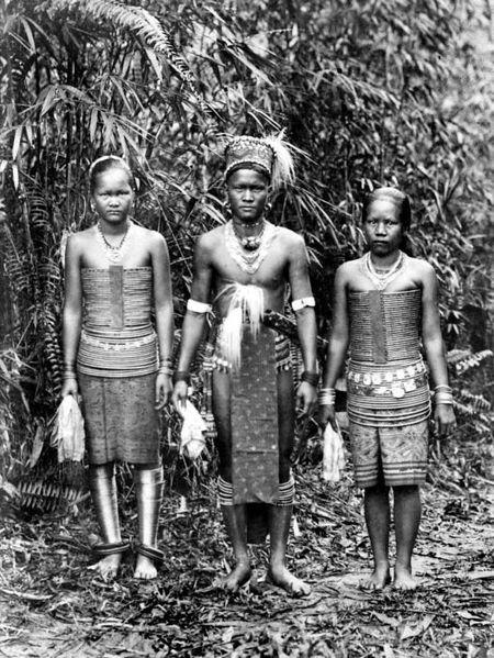 Borneo Dayak | Kucing Berjanggut. Malayo-Polynesian people as Borneo groups: Kadazan-Dusun, Murut, Iban, Bidayuh and Dayak are Austronesian people.