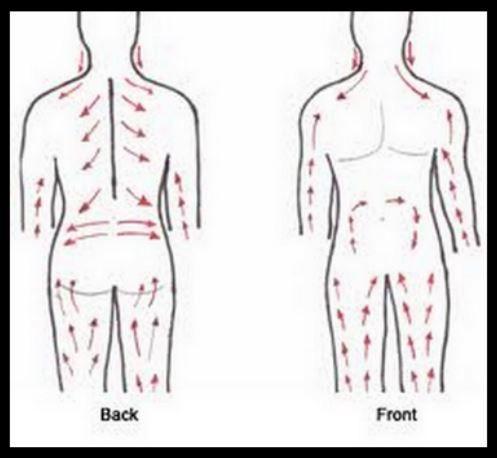 Benefits of Dry Skin Brushing - Ayurvedic Garshana