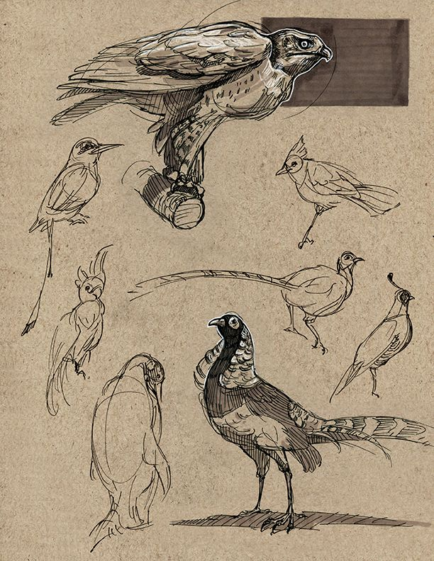 Some pages of dynamic sketching Some of these are on-site sketches:) enjoy!
