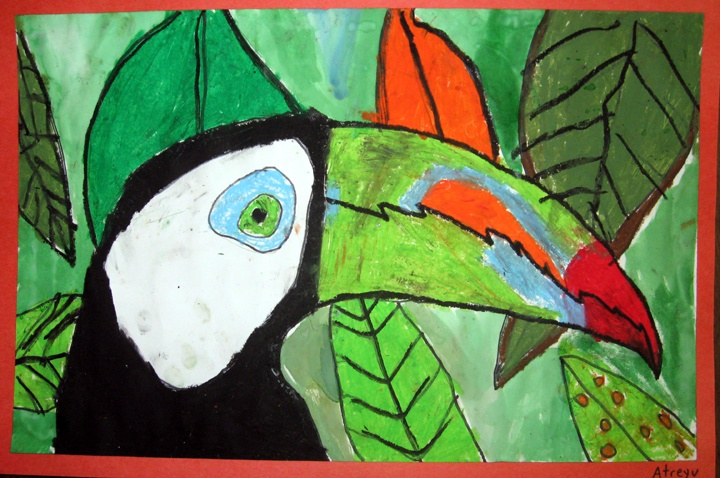 toucan oil pastel watercolor