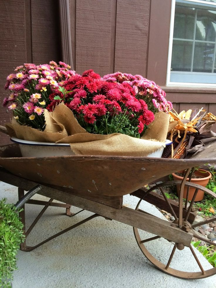 Rusty Wheelbarrow For A Flower Planter Trash To