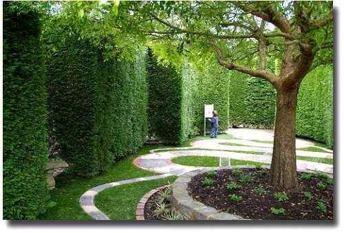 The Enchanted Maze on The Mornington Peninsular, a delightful and puzzling hedge maze-Melbourne,Australia