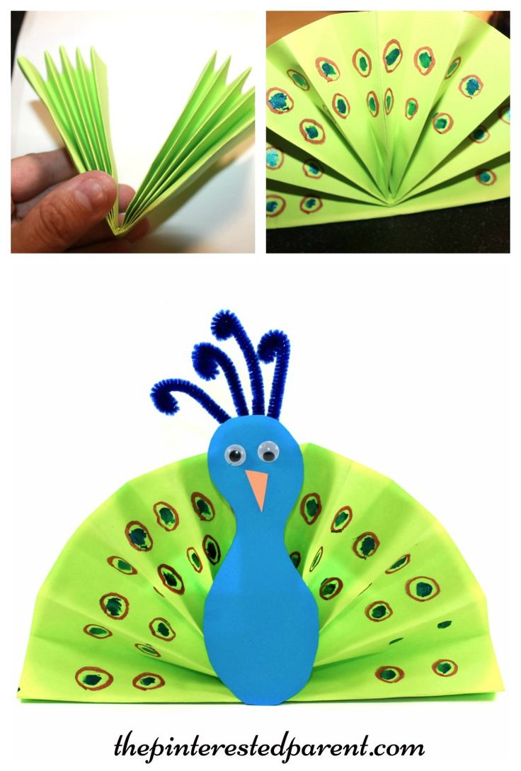 17 best images about art class spring ideas on pinterest for Where to buy contact paper for crafts