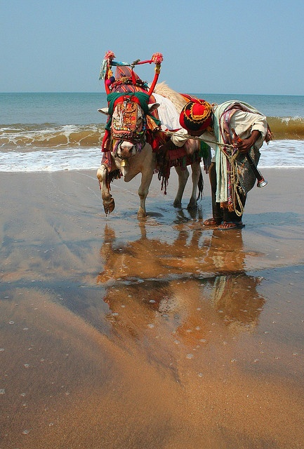 Sunday best on Anjuna, Goa, India. By konstantynowicz