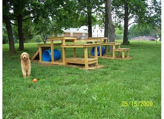 Backyard Dog Playground - Jack and Lewis need something like this in their new fenced in back yard!