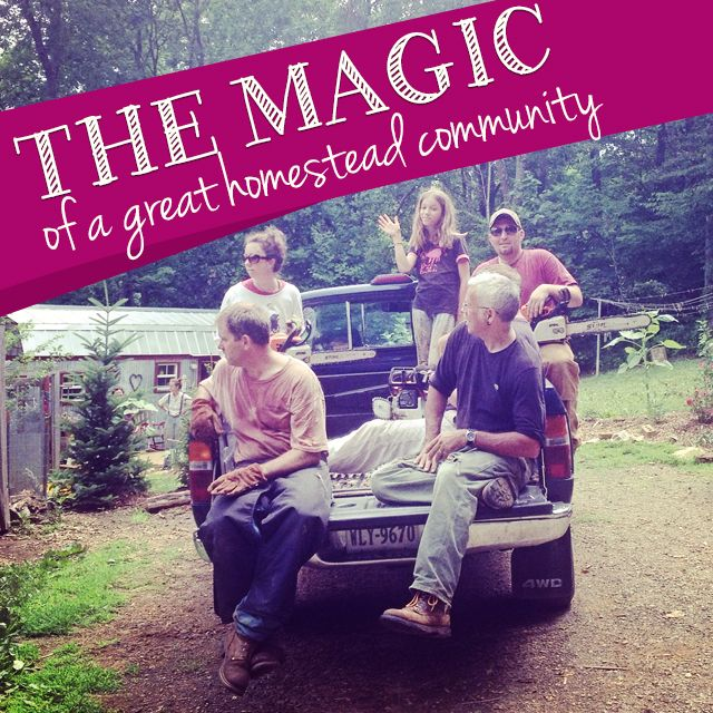 The Magic of a Great Homestead Community with the Homesteader Hub. Check out this amazing project to connect homesteaders and build community across the country!  Montana Homesteader