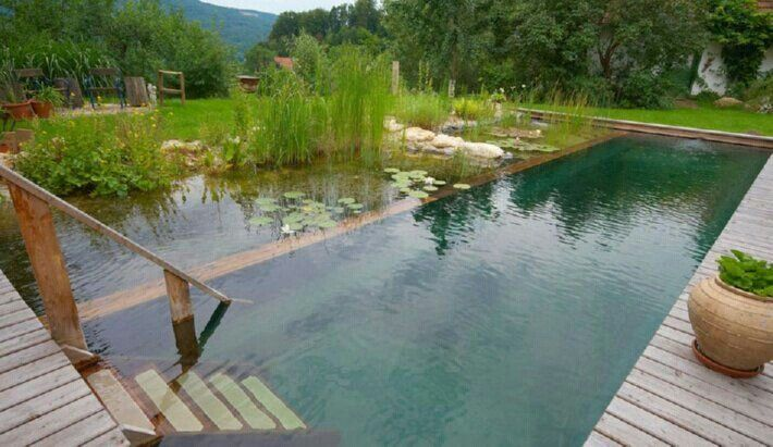 Self sustainable swimming pool self sustainability for Self sustaining pool