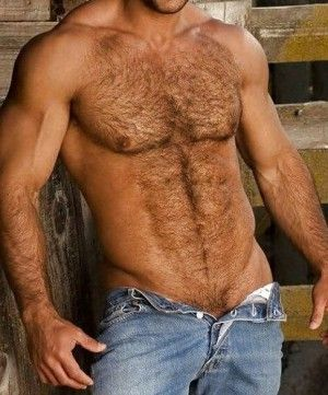 49 Best Images About Hairy Men On Pinterest Sexy Muscle