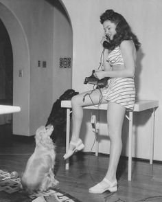 0 Dona Drake with dog and Siamese cats cocker spaniel