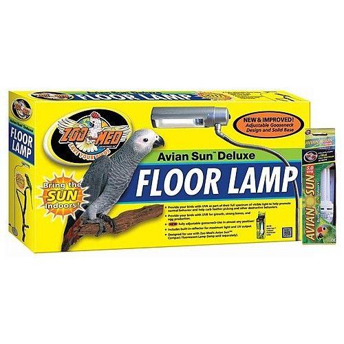 12 Best Parrot Amp Bird Lights Amp Lighting Solutions Images