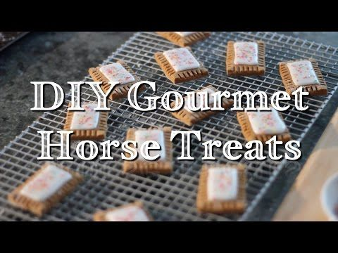 DIY Horse Treats - YouTube