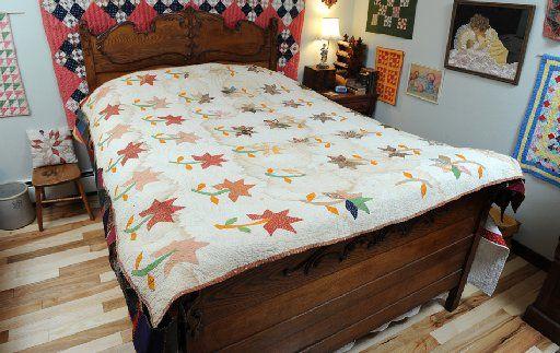 & Quot; Pea Ridge Lily & quot.;  Cette courtepointe de coton avait probablement été faite à la fin des années 1850 par la famille Pope de Pea Ridge, Ark. Pendant la guerre civile, la famille