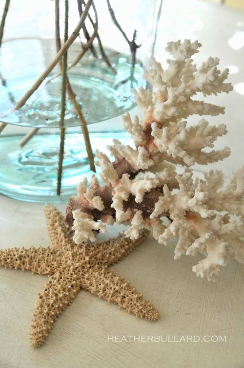 love the coralSeaside Decor, Bathroom Design, Beach House, Sea Shells, Beach Cottages, Coastal Living, Seashells, Coral Accent, Design Bathroom