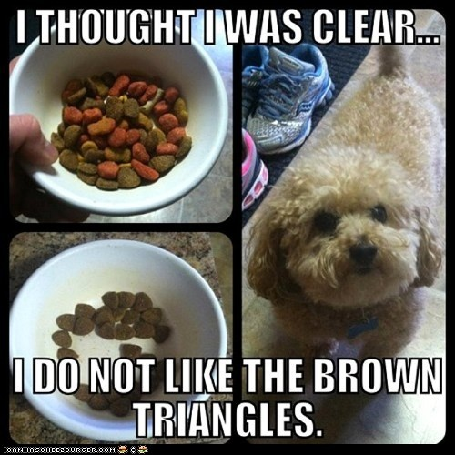 Funny!Thoughts, Puppies, Funny Dogs, Triangles, So Funny, Dogfood, Dogs Food, Picky Eaters, Animal