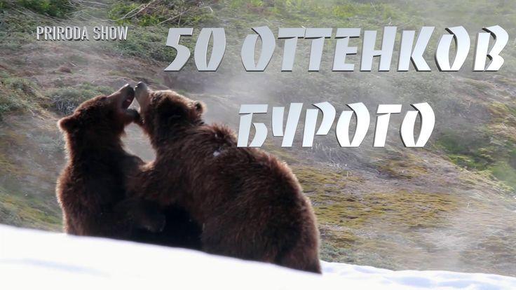 50 ОТТЕНКОВ БУРОГО. Часть 1 Гон.