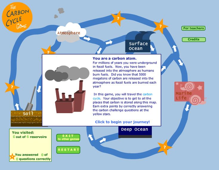 Carbon cycle lesson middle school
