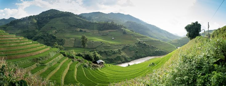 Rice paddies in Sa Pa Vietnam [OC] [6000x2298]
