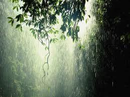 Rain,rain,rain.......