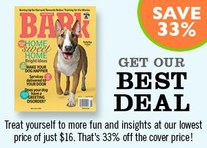 Subscribe to The Bark                                        ONLINE ARTICLES