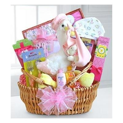 154 best my baby stuff images on pinterest baby photos gift sweet special stork delivery baby girl basket negle Image collections