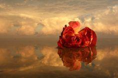 Σκέψεις, Λέξεις, Εικόνες: Το μήνυμα της Αγάπης-Μια φορά κι ένα καιρό εκεί ψηλά στον ουρανό,ζούσε η ΑΓΑΠΗ.Ήταν ένα πολύ γλυκό πλάσμα,γεμάτο ομορφιά και χάρη.Το χαμόγελο ποτέ δεν έφευγε από το πρόσωπό της κι απ΄όπου περνούσε σκόρπιζε τη χαρά.Ότι άγγιζε μεταμορφωνόταν στη στιγμή κι όταν άρχιζε να μιλά χιλιάδες τραγούδια γέμιζαν τους αιθέρες.΄Ολα τα πλάσματα αποζητούσαν την παρέα της κι από τα λόγια της έπαιρναν ελπίδα.Η καρδιά τους γέμιζε ζεστασιά.Η πίστη τους για τη ζωή θέριευε .