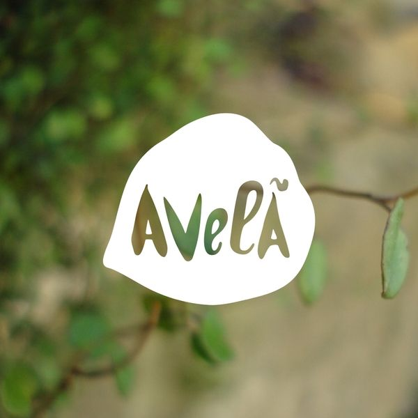 aVELÃ by Sara Gonçalves / introducing photography as a background interaction with the logo