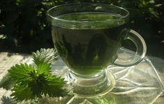 Η τσουκνίδα είναι ένα από τα πιο αποτελεσματικά και ευεργετικά βότανα για την υγεία μας. Περιέχε...